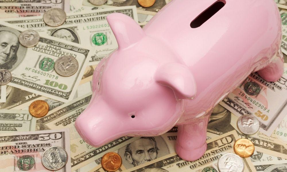 You are currently viewing כיצד לחסוך כסף באמצעות חיים ירוקים – חיסכון בחשמל, גז ועצים
